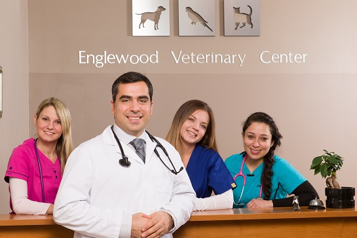 Emergency Animal Hospitals in NJ